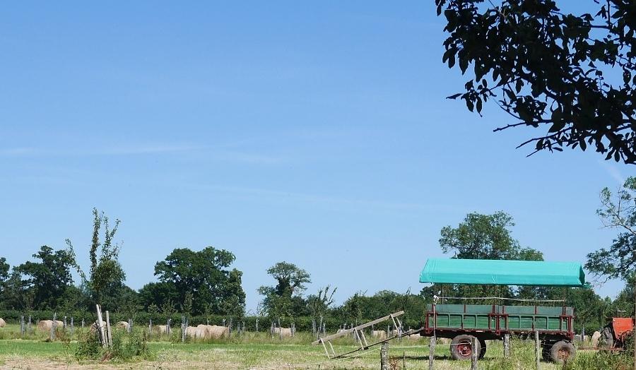 La carriole de la ferme de Canon