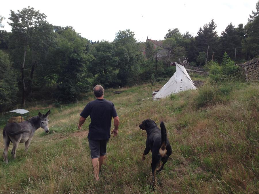 Bernard, l'âne, le chien et le teepee