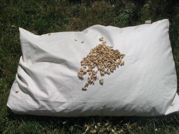 Spelt ball pillow