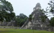 Ruines de Tikal au Guatemala