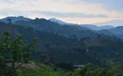 Sunrise, Coffee area, Colombia