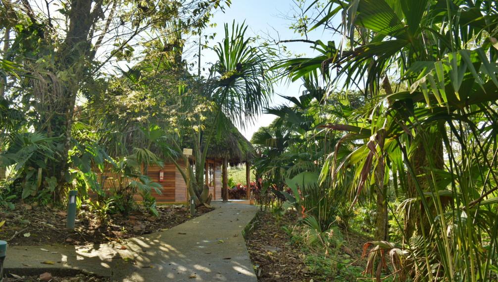 Allées di jardin tropical de Huasquila Lodge