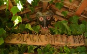 Black Sheep Inn, Chugchilan, Ecuador