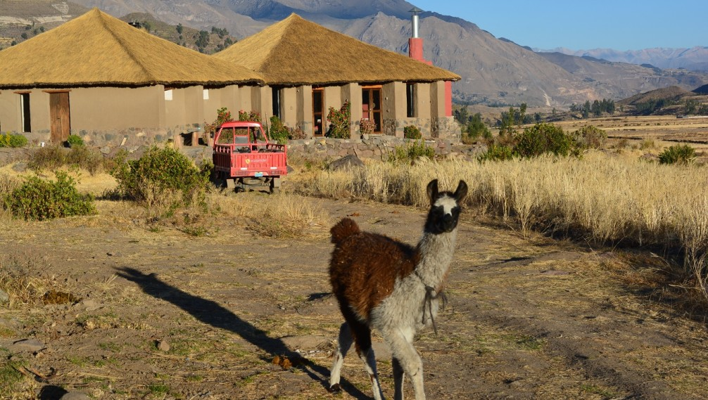 Chakapata Ecolodge, Colca Valley, Peru