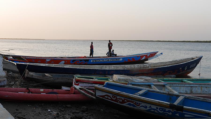 La pirogue Senegalia